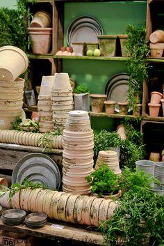 I love to visit this site. Great ideas for potting sheds, potting tables, greenhouse Garden Shop, Dream Garden, Garden Pots, Terracota, Greenhouse Gardening, Container Gardening, Potting Tables, Pot Jardin, Potting Sheds