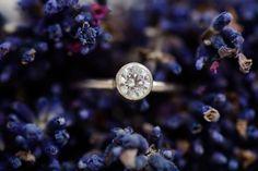 Verlobungsring, Diamant, Lavendel, Innsbruck Innsbruck, Ring Verlobung, Summer, Blue, Photography, Style, Lavender, Engagement Ring, Swag