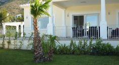 Luxusvilla Altomira, Denia, Costa Blanca, Spain Real Estates, Luxury Real Estate, Costa, Spain, Plants, Real Estate, Sevilla Spain, Plant, Planets