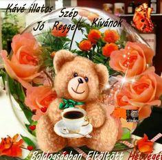 Fairy Princesses, Teddy Bear, Toys, Messages, Humor, Activity Toys, Clearance Toys, Humour, Teddy Bears