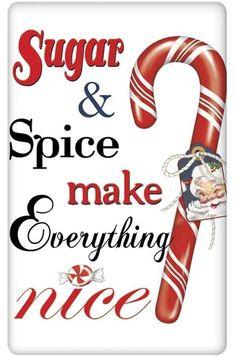 Sugar and Spice Peppermint Christmas 100% Cotton Flour Sack Dish Towel Tea Towel