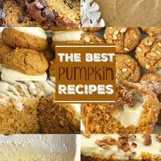 Lower Excess Fat Rooster Recipes That Basically Prime The Best Pumpkin Recipes Pumpkin Desserts Pumpkin Bread Pumpkin Cheesecake Pumpkin Sugar Cookies The Best Pumpkin Recipes All In One Place Homemade Pumpkin Pie, Best Pumpkin, Pumpkin Recipes, Fall Recipes, Holiday Recipes, Pumpkin Bread, Holiday Foods, Pumpkin Spice, Pumpkin Sugar Cookies