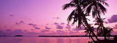 violet-beach-facebook-timeline-cover