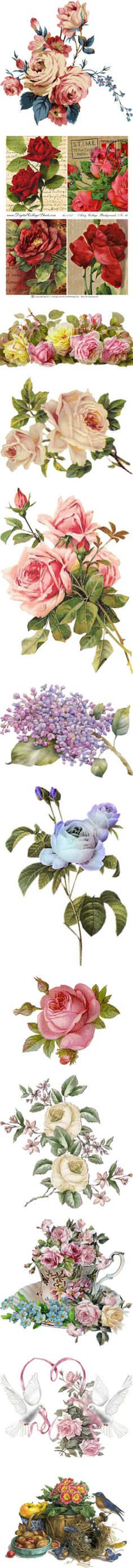 """Victorian Flowers"" by maneevanit ❤"