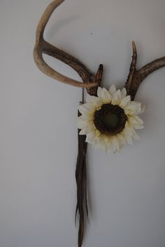 Deer Antlers with Flower & Feathers - Wall Hanging Taxidermy 6 Point Rack Home Decor Ivory White Sunflower Pheasant Jewelry Necklace Holder