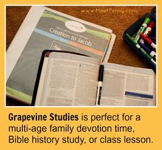 Grapevine Studies works with multiple ages together so it is perfect is any setting: home, church, or school.