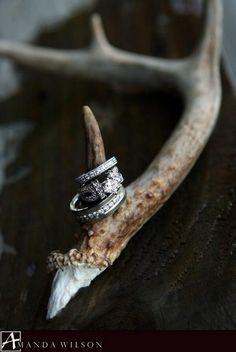 Deer antler and ring shot