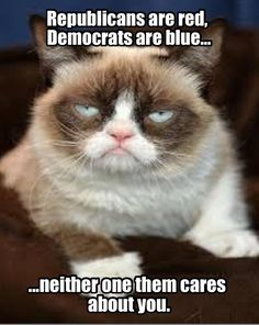 Democrats care more than Republicans for your information Grumpy Cat. But I really don't trust any of them.