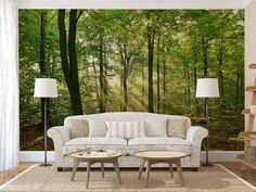 Sun shinning through forest nature photo wallpaper mural bedroom design wm213