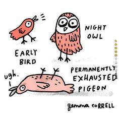 Early Bird   #funny #haha #lol #laughtard #funnypics #earlybird #funnybirds