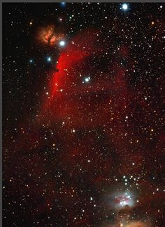 Orion Nebulosities Credit & Copyright: Emmanuel Mallart Explanation: Adrift 1,500 light-years away in one of the night sky's most recognizable conste... - HM Duarte - Google+