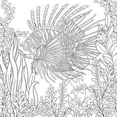 """Раскраски антистресс""""Морские животные"""". Обсуждение на LiveInternet - Российский Сервис Онлайн-Дневников"""