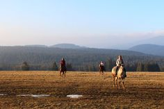 Trail riding at North Orava Cutting Horses Ranch