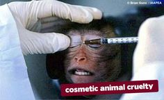 Dont let animals get tortured for healthier skin