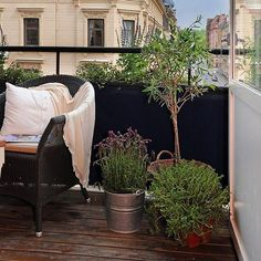 actually comfortable furniture on a balcony...love the plants seems simple and doable at the moment.