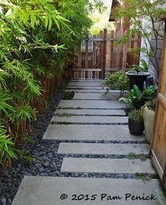 Path of poured concrete and Mexican beach pebbles. Colorful LA garden of Potted . - Path of poured concrete and Mexican beach pebbles. Colorful LA garden of Potted maven Annette Gutie - Side Yard Landscaping, Modern Landscaping, Landscaping Ideas, Backyard Ideas, Back Gardens, Outdoor Gardens, Mexican Beach Pebbles, Modern Landscape Design, Traditional Landscape