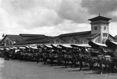 B&W photos reveal beauty of Saigon in Horse Cart, Places Worth Visiting, South Vietnam, Vietnam Travel, Business Travel, Laos, The Past, Around The Worlds, Scene