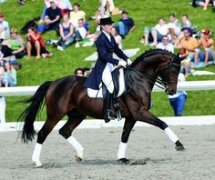 The Sport Horse Show and Breed Database - Weltenadel