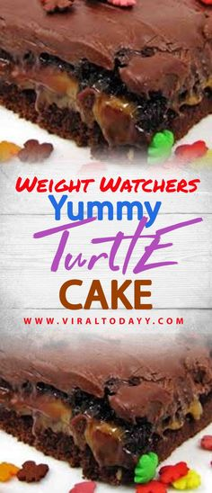 Yummy Turtle Cake – Page 2 – All about Your Power Recipes Healthy Low Calorie Meals, Low Calorie Recipes, Ww Recipes, Baking Recipes, Ww Desserts, Sugar Free Desserts, Healthy Desserts, Dessert Recipes, Weight Watchers Free
