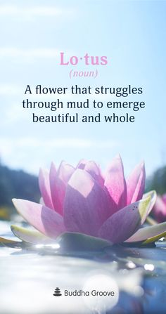 Word of the Day: Lotus Lotus: a flower that struggles through mud to emerge beautiful and whole. The post Word of the Day: Lotus appeared first on Easy flowers. Lotus: a flower that struggles through mud to emerge beautiful and whole.