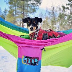 ENO Hammock are available in store now! Available in navy blue and retro colored. TAG your hammock buddy! Credit : chip_n_quin #expatbibes #hammocklife #hammock by @expatoutlet