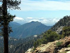 104 Fun Things To Do While Staying In Idyllwild Weekend Trips, Weekend Getaways, San Jacinto California, San Jacinto Mountains, Virtual Field Trips, Riverside County, Beach Camping, The Great Outdoors, Love