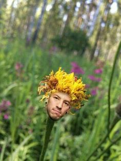 Plz end the hiatus the clique is losing their minds