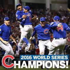 2016 World Series Champions :: Chicago Cubs