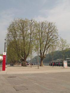 Cidade de Koblenz - Alemanha