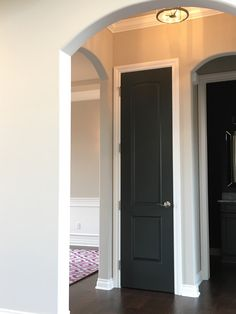 Wall : Sherwin Williams Accessible Beige | Dark Door : SW Iron Ore | Trim : SW…
