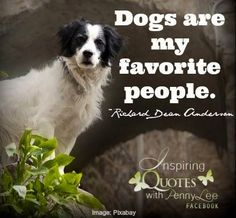 Dogs quote via Inspiring Quotes with Penny Lee on Facebook