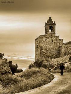 La Torre de la Alcazaba por Nono García
