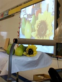 great way for whole class to see a still life