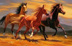 Nancy Davidson Fine Art - Horses