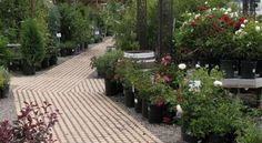 Drivable Grass® Permeable Pavers Project Gallery – Pathways.