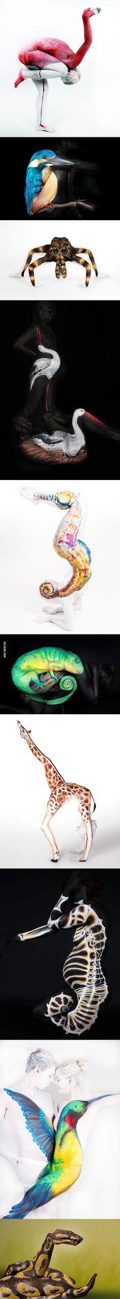 Animal Body Art
