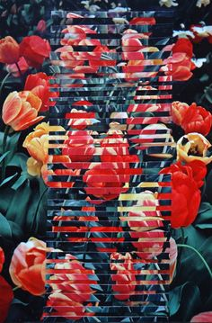 Dessi Terzieva's Collages   Trendland: Fashion Blog & Trend Magazine    amazing twists on flower photography