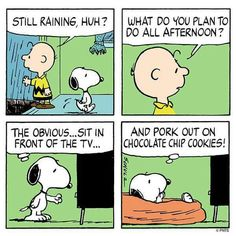 The rain, the cookies and other things!! Snoopy.