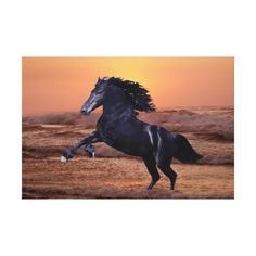 A sunset ocean horse canvas
