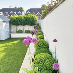 tulips garden care tulips garden care Lo… tulips garden care tulips garden care Lo… – How to care for the garden? Once you've reached your dream garden and your regular green space, you'll need to do regular mainte
