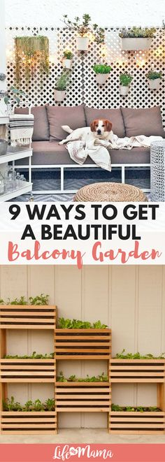 No backyard? No problem! You can still have a beautiful patio or balcony garden with some careful planning. #balconygarden