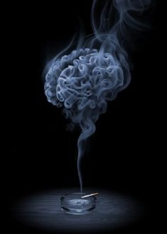 Brain circuit that supports smoking cessation identified.