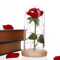 Find More Artificial & Dried Flowers Information about 1Pcs Beast Red Rose Flower Vase Party Decorations In Glass Dome Wooden Base Valentine Day Flowers Christmas Mother's Day Gift ,High Quality red rose flower,China rose flower Suppliers, Cheap red rose from songhuiling Store on Aliexpress.com