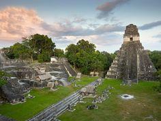 La cité précolombienne dresse dans la forêt tropicale ses temples, palais et pyramides. Un monde perdu, découvert au nord de l'actuel Guatemala en 1848....