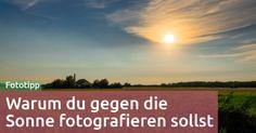 Fototipp 56: Gegenlicht oder warum du in die Sonne fotografieren sollst und wie das geht