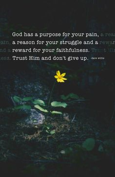 Encouraging Quotes Religious Bible Quotes God Has Purpose For Your Pain Reason For Struggle Reward Faith Faithfulness Trust Him Don Patheos Dave Willis Quotes Dave Willis Don't Give Up Quotes, Quotes About God, Great Quotes, Super Quotes, Quotes About Giving Up, Quotes About Overcoming, Trust In God Quotes, Hope And Faith Quotes, Overcome Quotes
