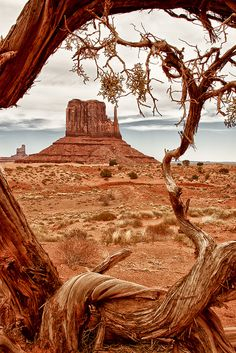 West Mitten Butte - Monument Valley by Marvin Bredel Parc National, National Parks, Landscape Photography, Nature Photography, Photography Tips, Travel Photography, Wedding Photography, Pics Art, Best Photographers