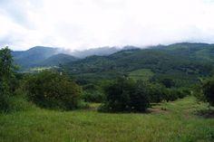 PROPERTY TZANEEN - TZANEEN Farm TZANEEN