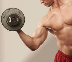 The Workouts for Big Arms in Four Weeks