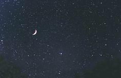 pikelo: Stars, Stars, Stars by karkadé